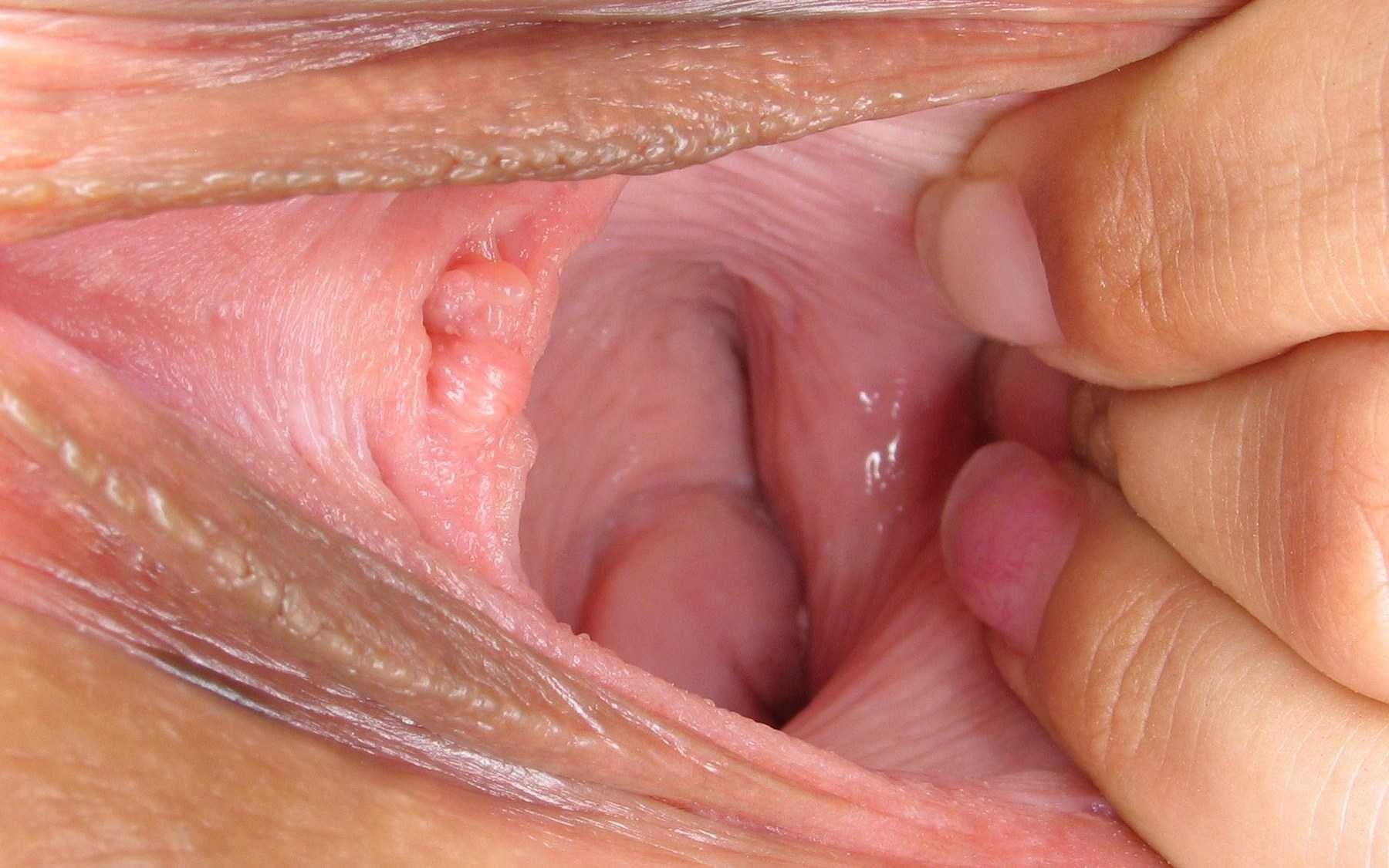 Shaved pussy close up creampie