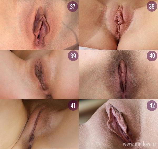 zhenskaya-vagina-nazvanie